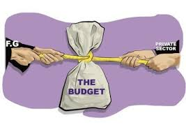 Nigeria's Budget and fundamental incompatibility By Carl Umegboro